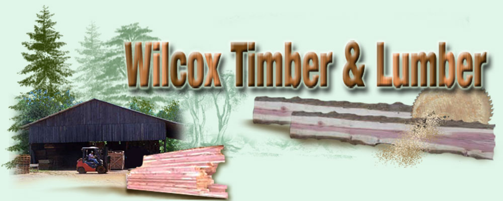 Wilcox Timber and Lumber